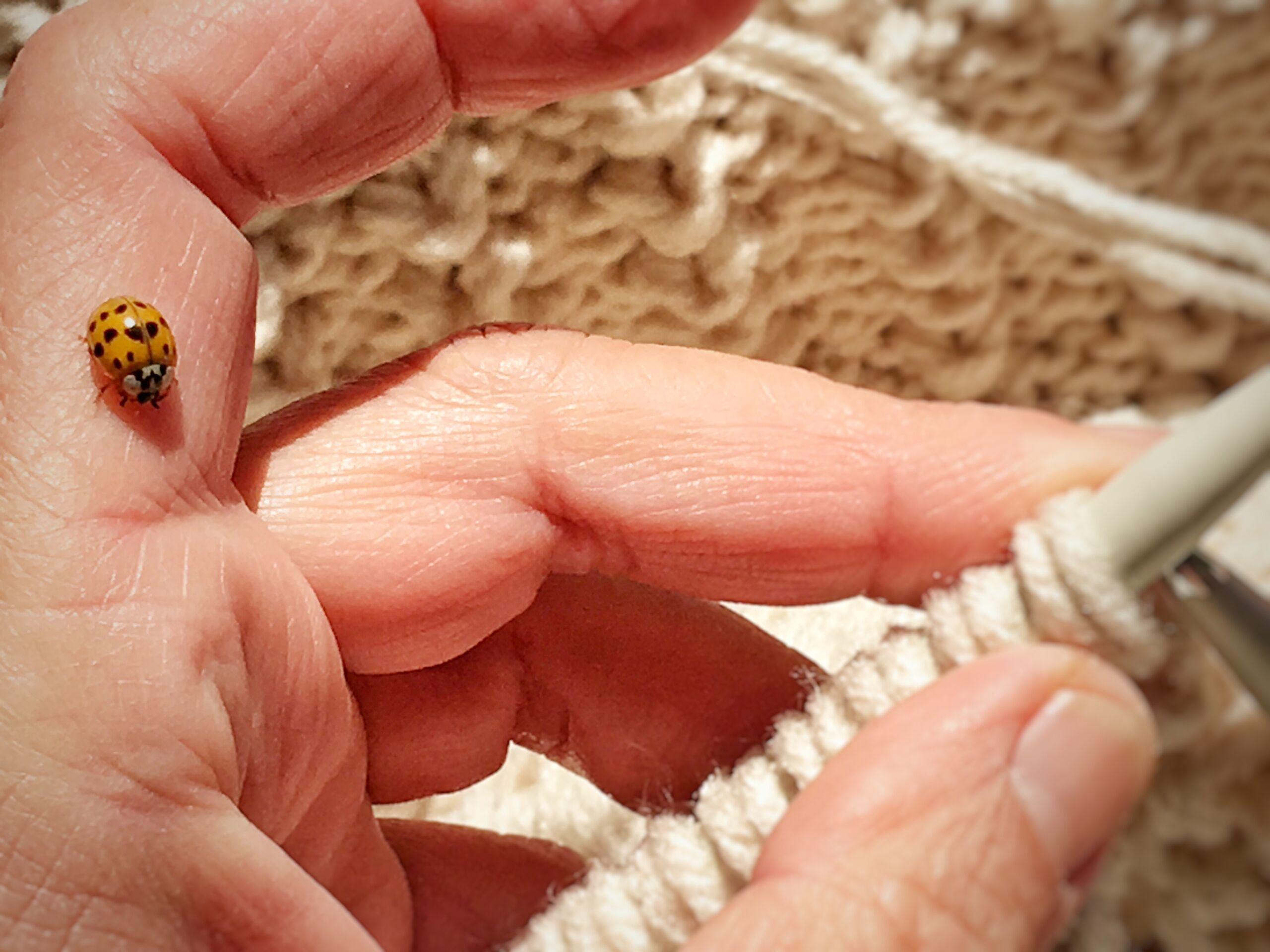 manta tejida covertor scaled - Bufandas tejidas con restos de hilos de lanas #diy